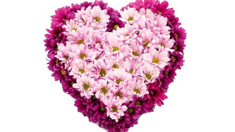 Букет для любимой в виде сердца из хризантемы, букетом цветов фото
