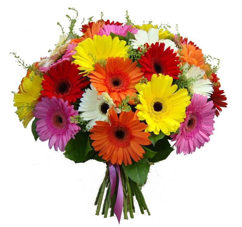 Букет из герберов доставка, цветов